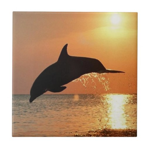 Dolphins by Sunset Ceramic Tile