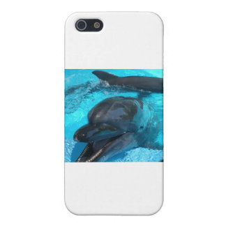 Dolphins Case For iPhone SE/5/5s