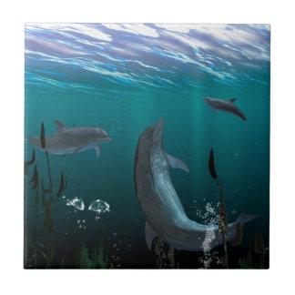 dolphins ceramic tile