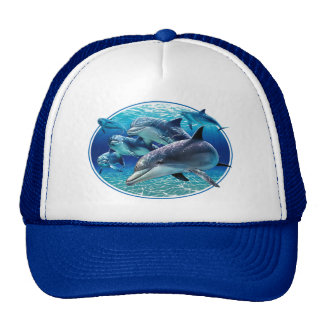 DOLPHINS COOL SUMMER CAPS TRUCKER HAT