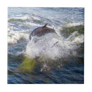 Dolphins Followings Boat Ceramic Tile