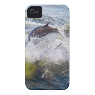 Dolphins Followings Boat iPhone 4 Cover