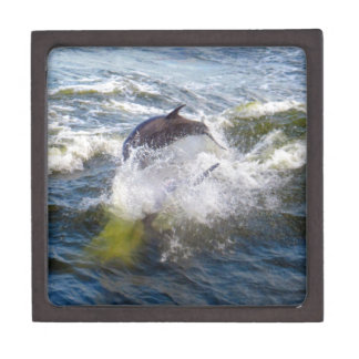 Dolphins Followings Boat Keepsake Box