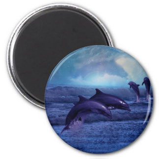 Dolphins fun and play 2 inch round magnet