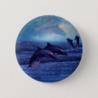 Dolphins fun and play pinback button