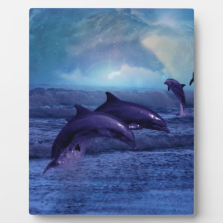 Dolphins fun and play plaques
