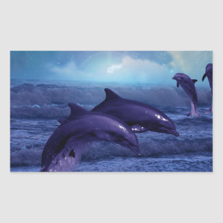 Dolphins fun and play rectangular sticker