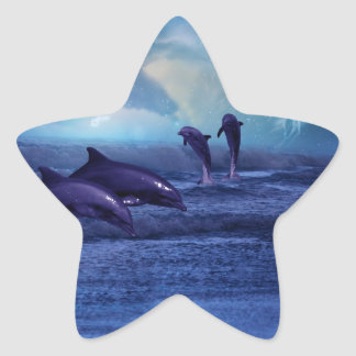 Dolphins fun and play star sticker