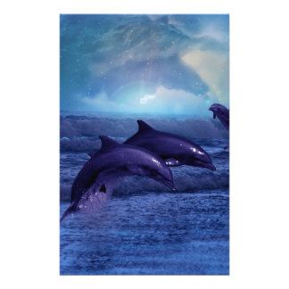 Dolphins fun and play stationery