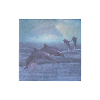 Dolphins fun and play stone magnet