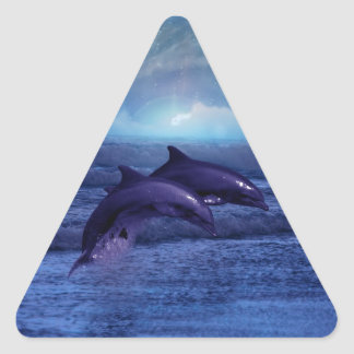 Dolphins fun and play triangle sticker