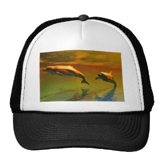Dolphins in sunset hat