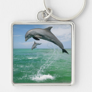 Dolphins in the wild keychain
