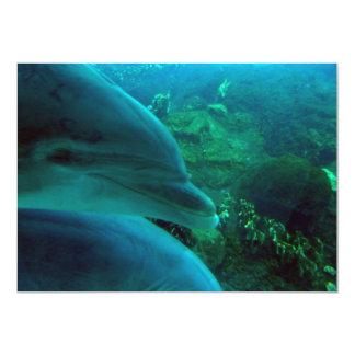 Dolphins Invitations