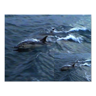 Dolphins 4.25x5.5 Paper Invitation Card