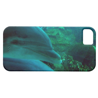 Dolphins iPhone SE/5/5s Case