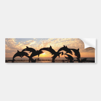 Dolphin's jumping from the water at sunset bumper sticker