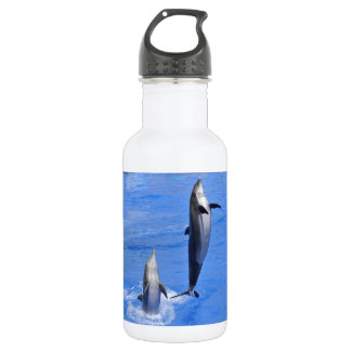 Dolphins jumping out of water stainless steel water bottle