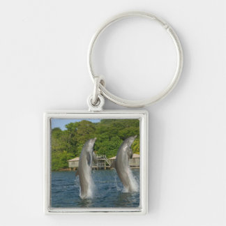 Dolphins jumping, Roatan, Bay Islands, Silver-Colored Square Keychain