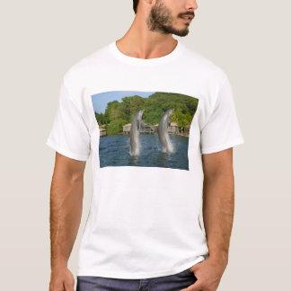 Dolphins jumping, Roatan, Bay Islands, T-Shirt