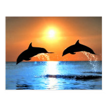 Dolphins Leaping Postcard