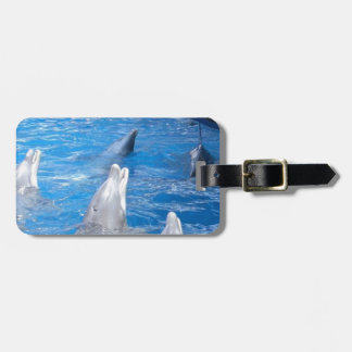 Dolphins Lovers Bag Tag