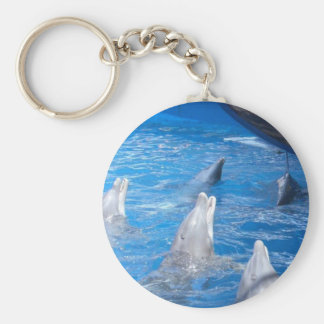 Dolphins Lovers Basic Round Button Keychain