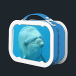 """Dolphins Lunch Box<br><div class=""""desc"""">Cute bottlenose dolphin swimming along underwater.</div>"""