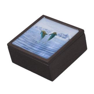 Dolphins make ripples gift box