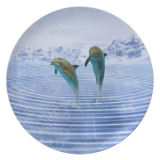 Dolphins make ripples plate