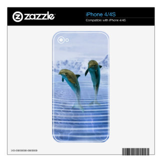 Dolphins make ripples skin iPhone 4 decal