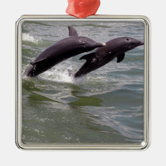 Dolphins Metal Ornament