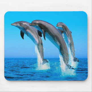 Dolphins Mousepads