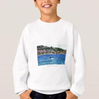 Dolphins Near Palos Verdes Sweatshirt