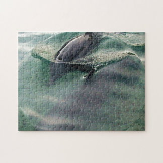 Dolphins of Hawaii Jigsaw Puzzle