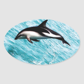 Dolphins Oval Sticker