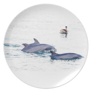Dolphins & Pelican Plate