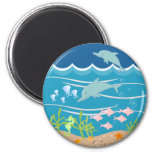 Dolphins playing fridge magnets
