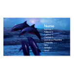 Dolphins playing in the ocean Double-Sided standard business cards (Pack of 100)