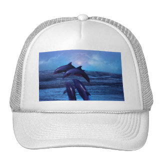 Dolphins playing in the ocean hats