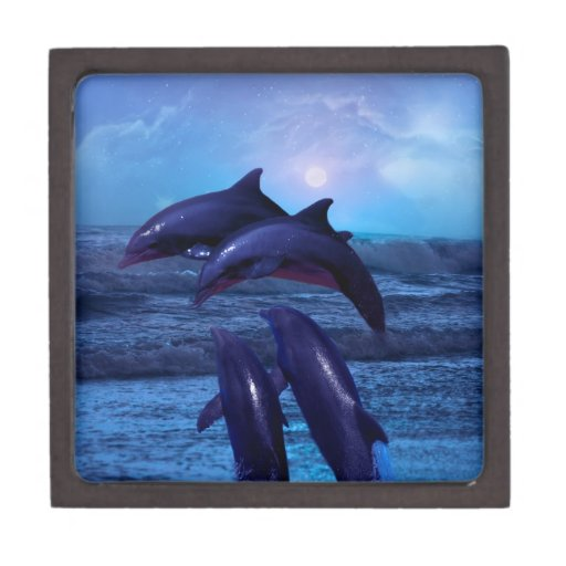 Dolphins playing in the ocean premium gift boxes