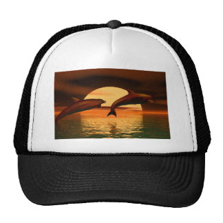 dolphins playing into the sunset mesh hats