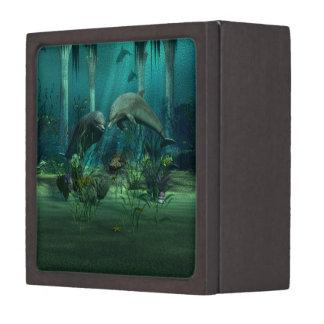 Dolphins Premium Gift Box