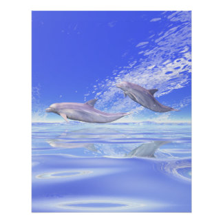 Dolphins Racing Poster