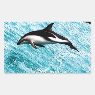 Dolphins Rectangular Sticker
