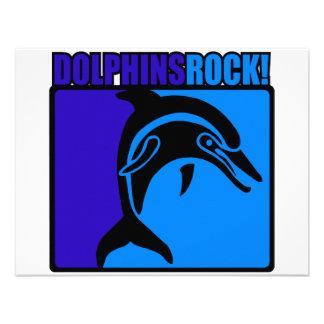 Dolphins Rock 3 Announcement