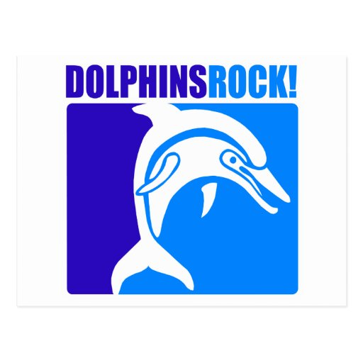 Dolphins Rock! #4 Post Card