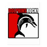 Dolphins Rock! Postcard