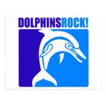 Dolphins Rock! Postcards
