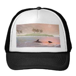 Dolphins Scene Hat